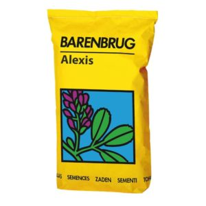 barenbrug-alexis