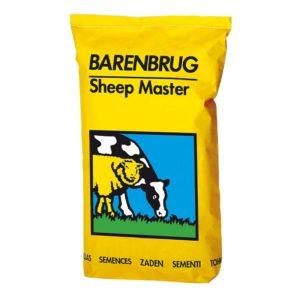barenbrug-sheep-master-1