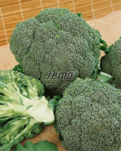 0224-semo-zelenina-brokolice-lucky2