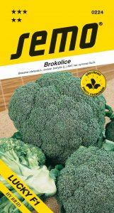 0224_brokolice-LUCKY-F1-2