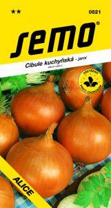 0521_cibule-ALICE-2