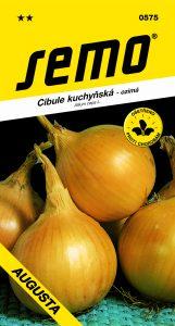 0575_cibule-AUGUSTA-1-2