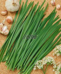 2811-semo-zelenina-pazitka-cinska-pazitka-cinska2