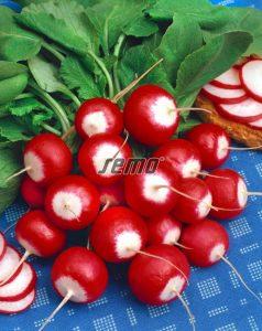 3401-semo-zelenina-redkvicka-duo2