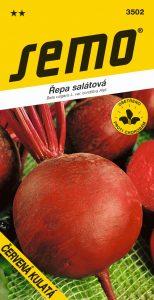 3502_řepa-salátová-ČERVENÁ-KULATÁ-2