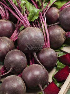 3512-semo-zelenina-repa-salatova-redshine-2