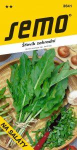 3641_šťovík-zahradní-2