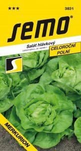 3831_salát-hlávkový-MERKURION-1