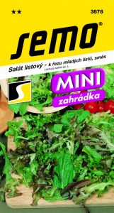 3878_salát-listový-SMĚS-K-ŘEZU-ML.LISTU_MINI-3