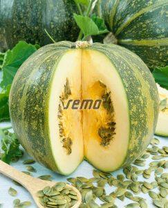 4003-semo-zelenina-tykev-olejna-apetit2