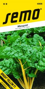 4906_mangold-BRIGHT-YELLOW-F1-1