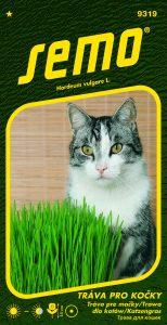9319_tráva-pro-kočky-2