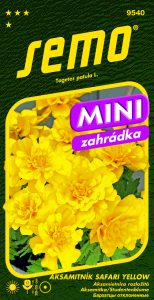 9540_aksamitník-SAFARI-YELLOW_MINI-2