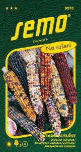 9570_okrasná-kukuřice-MULTICOLOR-2