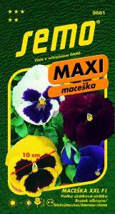 9681_maceška-XXL-F1_MAXI-2