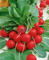 cherry-belle